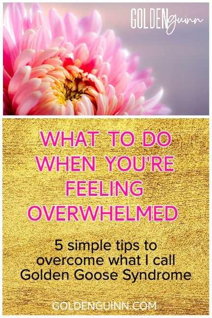 What To Do When You're Feeling Overwhelmed goldenguinn.com